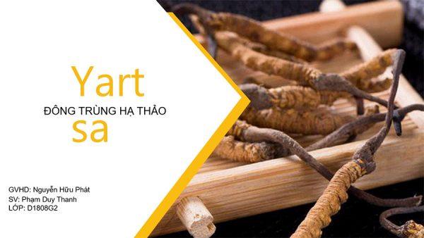 ế hoạch Digital Marketing Đông Trùng Hạ Thảo