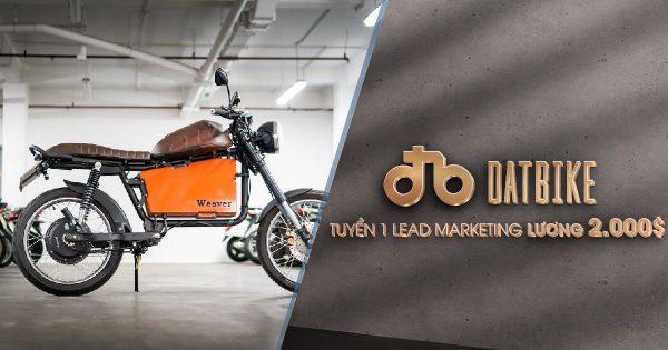 Tuyển 1 Lead Digital Marketing lương 2,000$/1 tháng